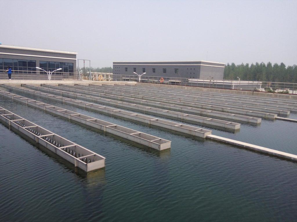 Fertilizing residual materials and sewage sludge