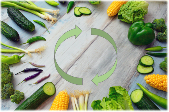 Agriculture biologique et Économie Circulaire