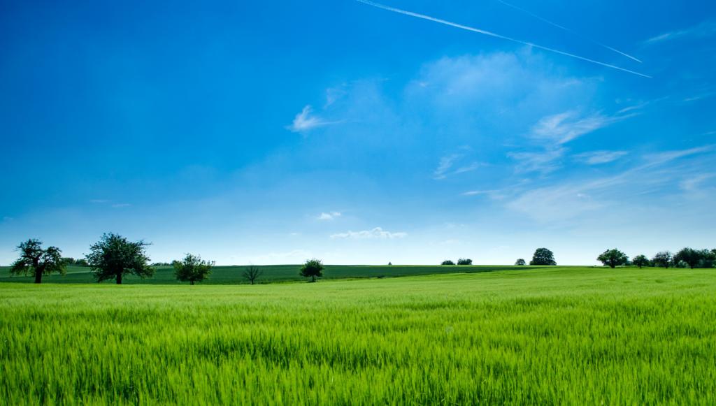 Gaz à effet de serre en agriculture : un exemple de solution – Solugen